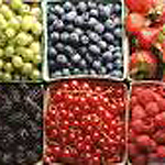 Pac 'n Vac containers -soft fruit