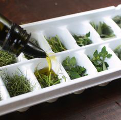freezing-herbs